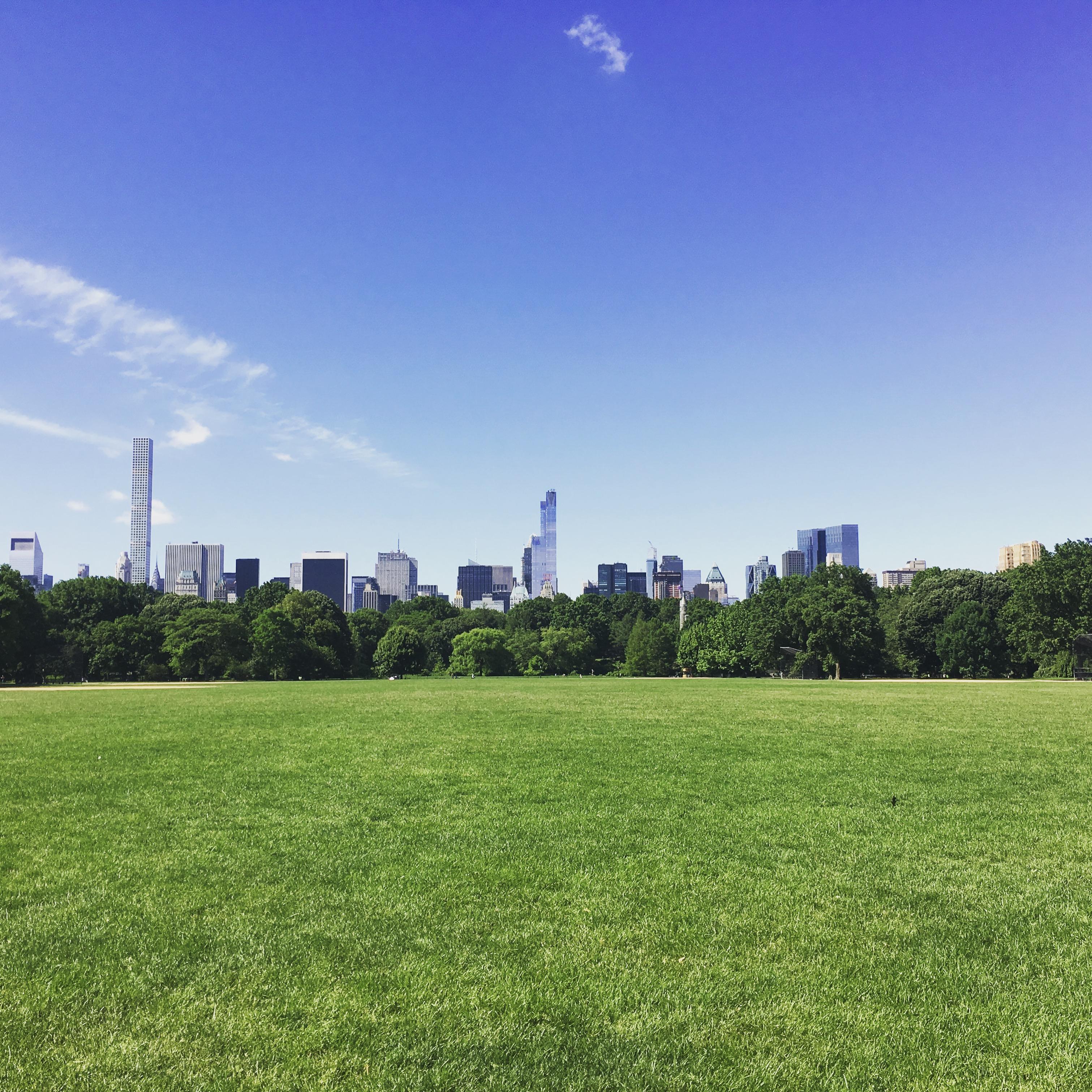 Aussicht in Central Park New York City